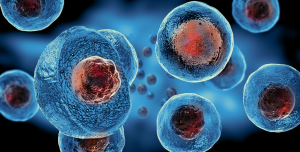 My Bliss Clinic Stem Cell Therapy Cells Picture 1